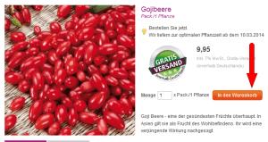 FireShot Screen Capture #142 - 'Gojibeere - Exotisches Obst - Obstpflanzen - Gartenpflanzen - TOM-GARTEN - Saatgut, Blumen, Blumenzwiebeln und Pflanzen per Post' - www_tom-garten_de_gartenpflanzen_obstpflanzen_exotisc
